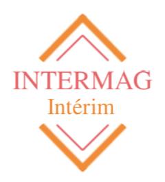 Intermag Interim